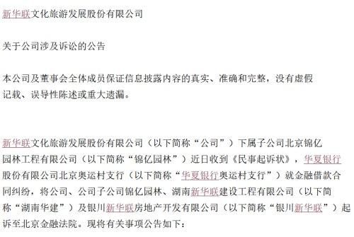 2.41亿!新华联因债务担保被提出诉讼,银川新华联同为被告